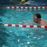 Wettkampfschwimm-Training